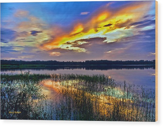 Talmadge Lake Florida Sunset Wood Print