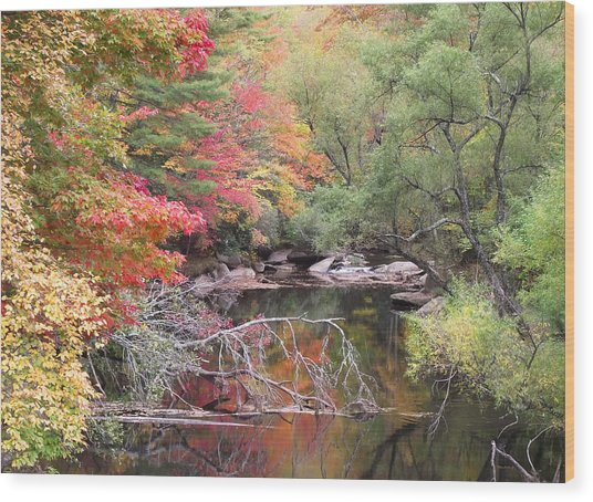 Tanasee Creek In The Fall Wood Print
