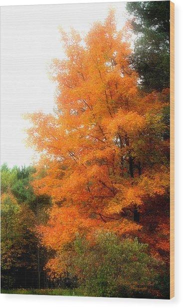 Tangerine Autumn  Wood Print by Darlene Bell