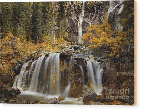 Tangle Falls, Jasper National Park Wood Print