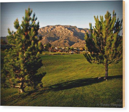 Tanoan Mountain Views Wood Print