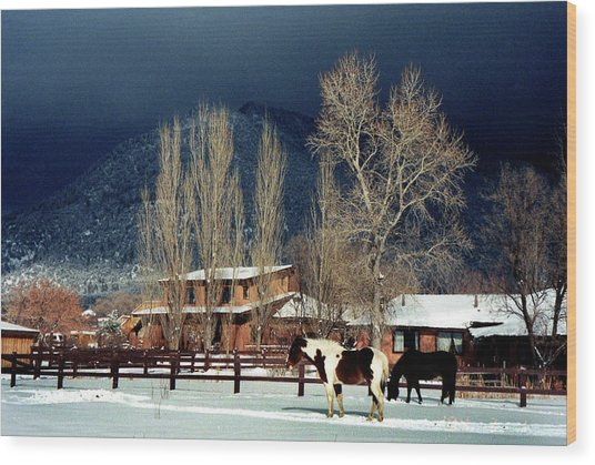 Taos Typical Wood Print by Ed Golden