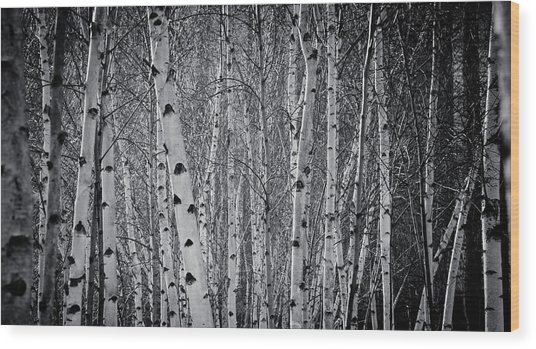 Tate Modern Trees Wood Print