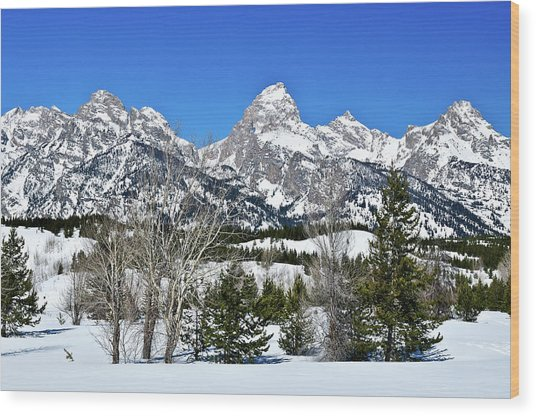 Teton Winter Landscape Wood Print