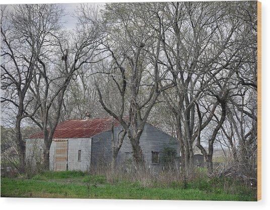 Texas Barn Wood Print by Teresa Blanton