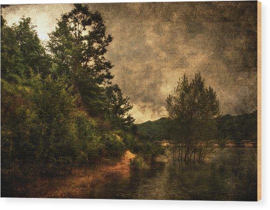 Textured Lake Wood Print