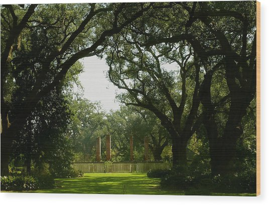 Tezcuco Plantation Grounds Wood Print