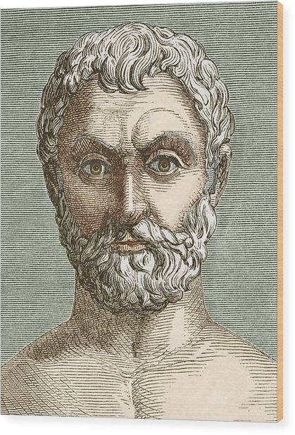 Thales, Ancient Greek Philosopher Wood Print by Sheila Terry