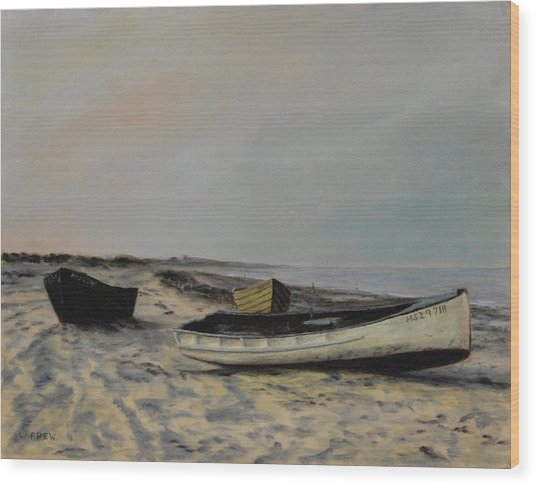 The Beach At Plymouth Wood Print