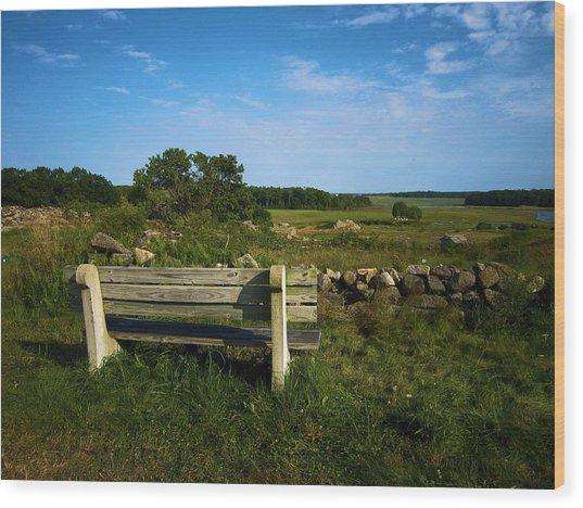 The Bench In Biddeford Wood Print by John J Murphy III