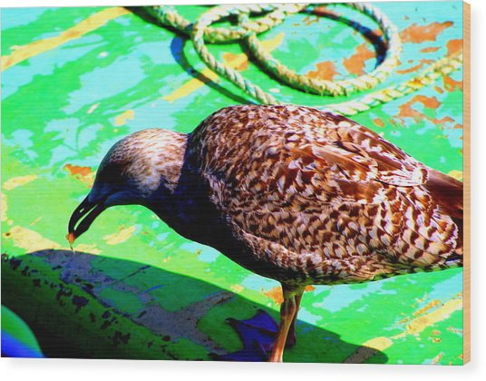 The Bird Wood Print by Amanda Pillet
