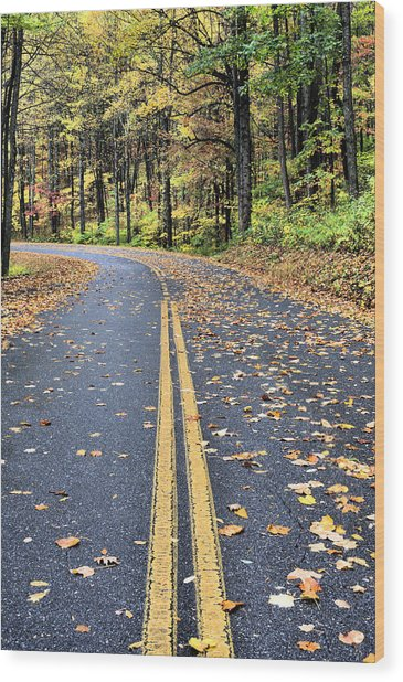 The Blue Ridge Parkway Wood Print by JC Findley