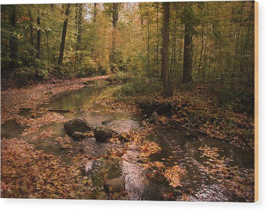 The Brook In The Woods Wood Print