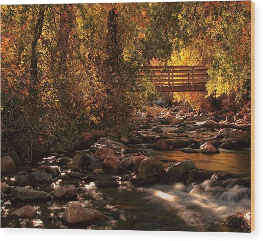 The Color Of Autumn Wood Print by Gene Praag