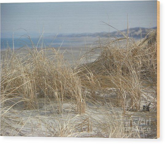 The Dunes Wood Print by John Doble