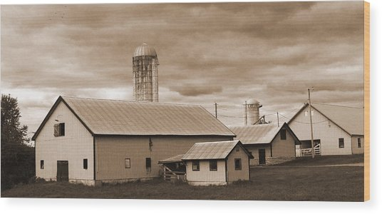 The Farm Wood Print by Barry Jones