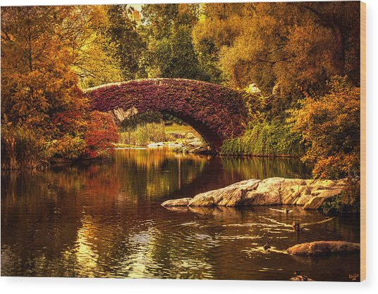 The Gapstow Bridge Wood Print