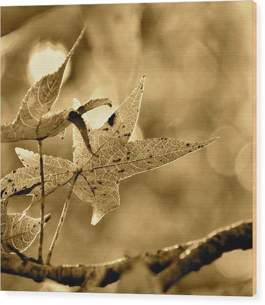 The Gum Leaf Wood Print