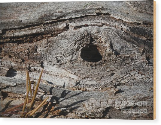 The Knot Wood Print