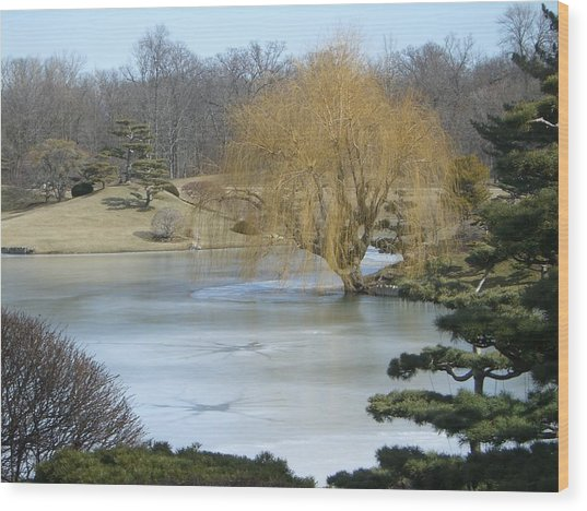 The Landscape In February Wood Print by Dragica Lukovic