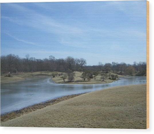 The Landscape In February Part IIi Wood Print by Dragica Lukovic