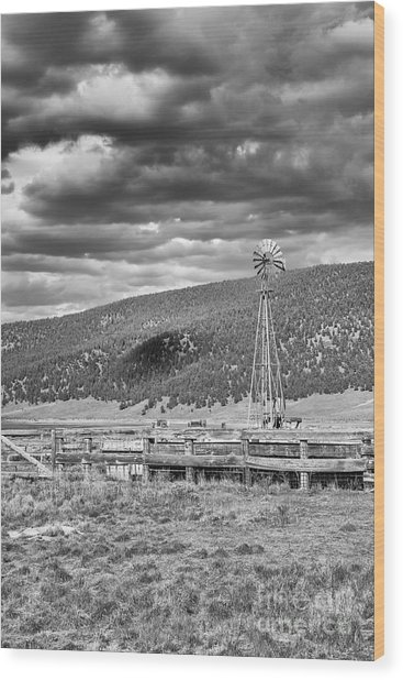the lonly windmill in B and W Wood Print