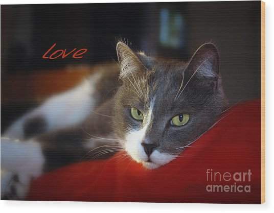 Wood Print featuring the photograph The Look Of Love by Vicki Ferrari