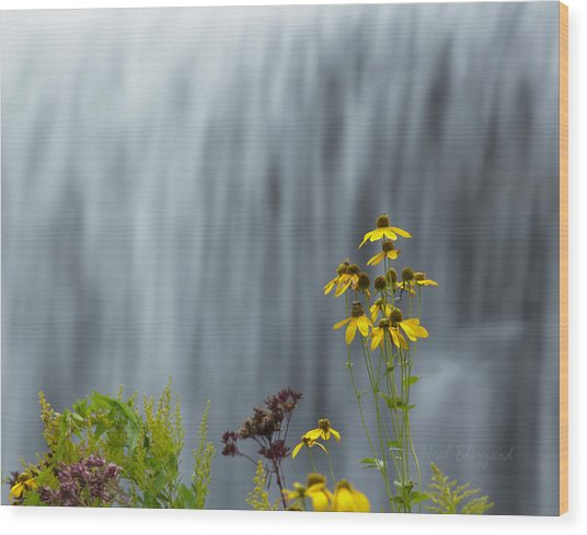 The Middle Falls II Wood Print by Neal Blizzard