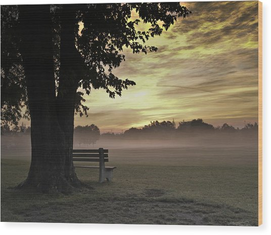 The Morning Golden Light Wood Print