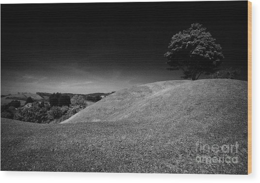 The Mound Of Down Downpatrick County Down Northern Ireland Wood Print by Joe Fox