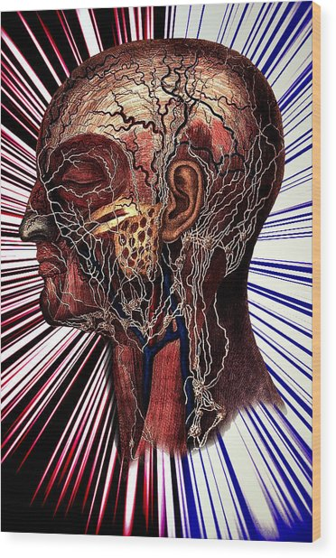 The Nerve Wood Print by Nok