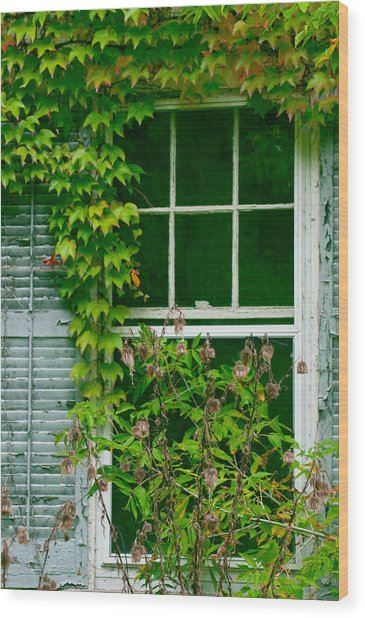 The Other Window Wood Print