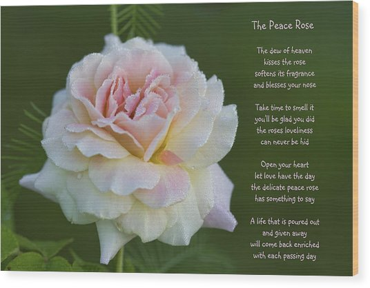 The Peace Rose Wood Print
