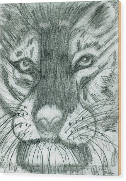 The Puma Wood Print by Susan Risse