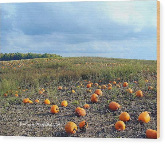 The Pumpkin Patch Wood Print