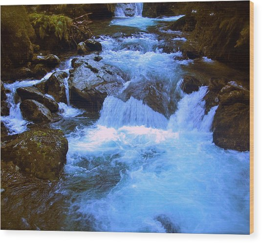 The Quintessential Falls Wood Print by HweeYen Ong