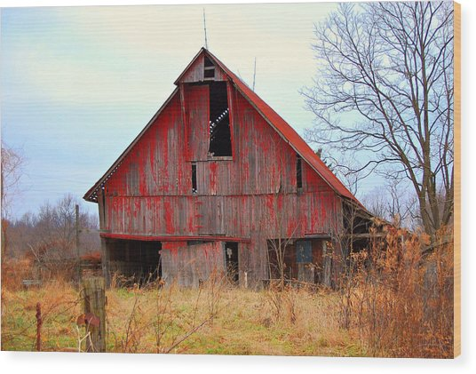 The Red Barn Wood Print by Robin Pross