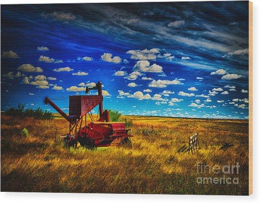 The Red Hopper Wood Print by Rick Bragan