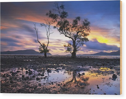 The Reflex Of Tree In Sunset Wood Print by Arthit Somsakul