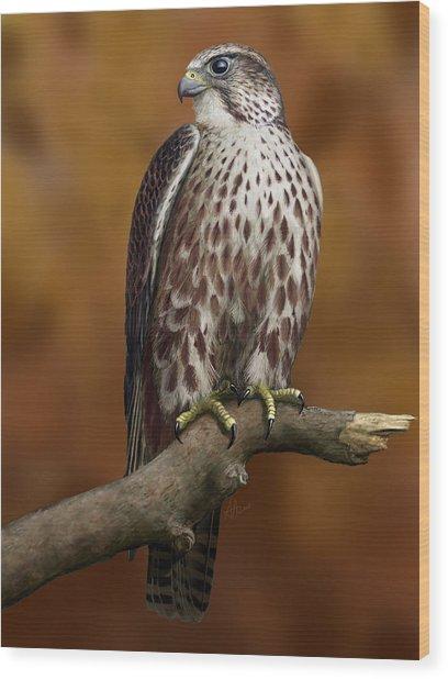 The Saker Falcon Wood Print by Deak Attila