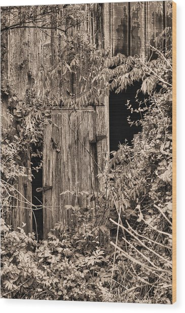 The Secret Door Wood Print by JC Findley