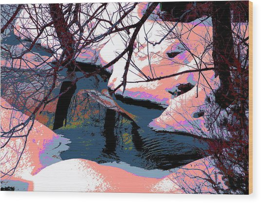 The Shades Of Winter Wood Print by Shirley Mailloux
