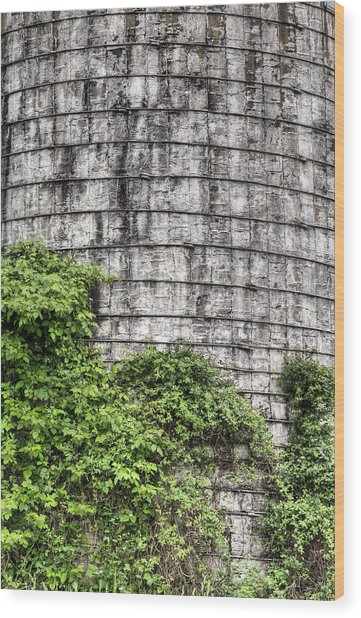 The Silo Wood Print by JC Findley