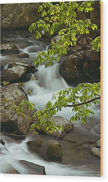 The Sinks Wood Print
