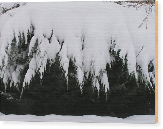 The Snow Cave Wood Print