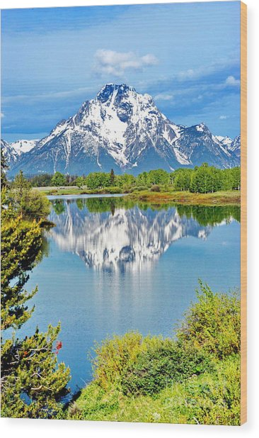 The Tetons From Oxbow Point Wood Print by Richard Brady