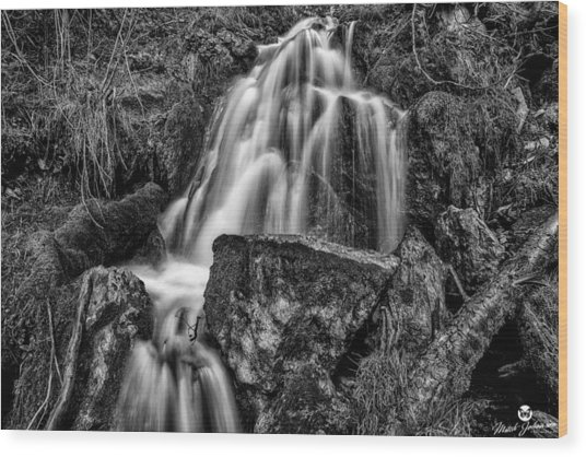 The Upper Butler Fork Falls Bw Wood Print by Mitch Johanson