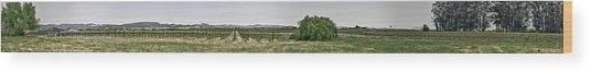 The Vineyard Wood Print by Nathaniel Kolby
