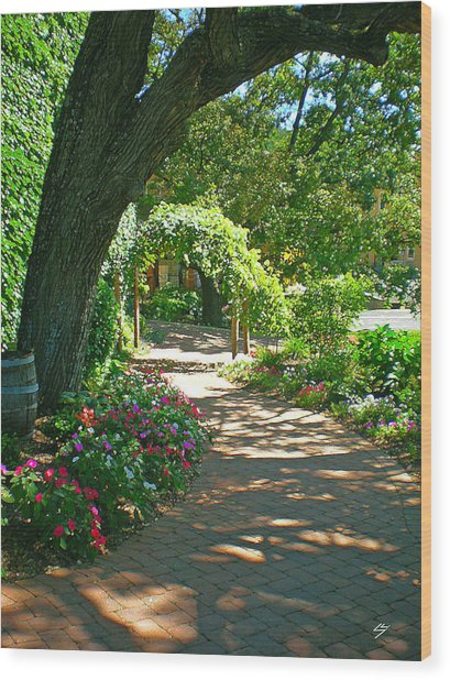 The Vineyard Walk Wood Print