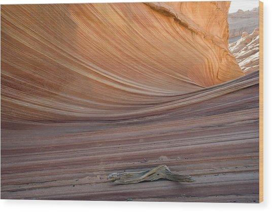 The Wave Rock Formation, Arizona, Usa Wood Print by Bob Gibbons